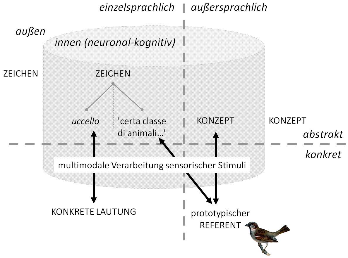 /var/cache/html/dhlehre/html/wp content/uploads/2016/12/1482322199 Vogel proto